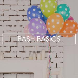 BASH BASICS