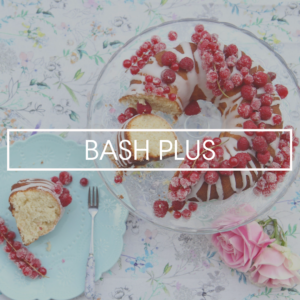 BASH PLUS